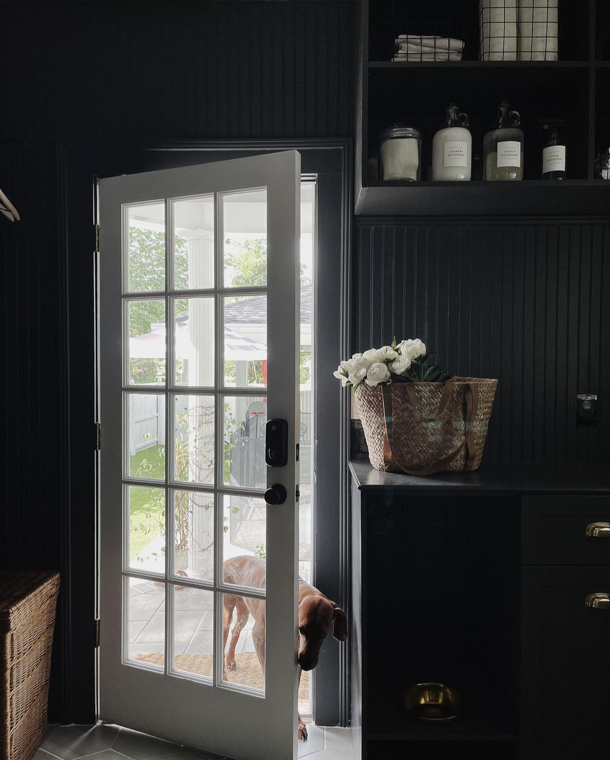 Dark and rustic mudroom with brown dog